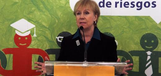 Christa Sedlatschek, EU-OSHA Director, Photo: EU-OSHA